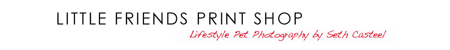 Little Friends Print Shop